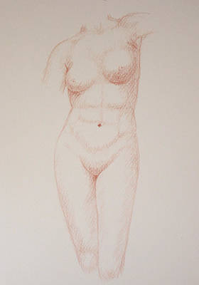 Female Torso #3 Art Print by Deborah Dendler