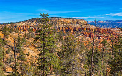 Photograph - Verde Mesa by John M Bailey