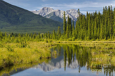 Photograph - Vermilion Lakes by Dee Cresswell