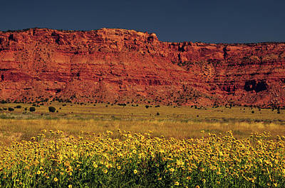 Vermillion Cliffs And Field Of Yellow Art Print by Michel Hersen