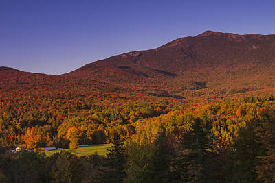 Vermon Autumn Sunset Mount Mansfield Mountain Forest Art Print by Andy Gimino