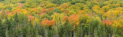 Autumn Scene Photograph - Vermont Autumn Fall Panorama Forest Foliage by Andy Gimino