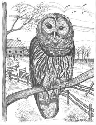 Farm Drawing - Vermont Barred Owl by Richard Wambach