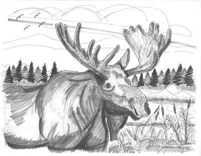 Vermont Drawing - Vermont Bull Moose by Richard Wambach