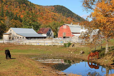 Little Mosters - Vermont Farm in Autumn West River Valley by John Burk