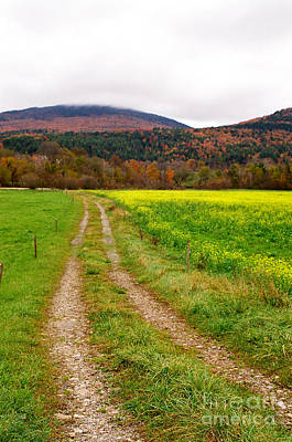 Photograph - Vermont Farmer's Track by Vinnie Oakes