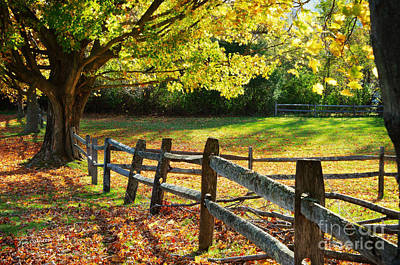 Vermont Fence Art Print by Jim  Calarese