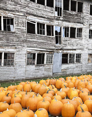 Photograph - Vermont Pumpkins by Charles Harden