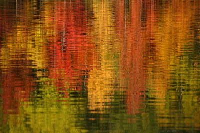 Photograph - Vermont Relections 1 by Robert Lozen