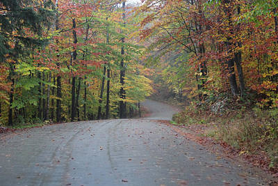 Vermont Road On Rainy Fall Day Art Print by Vance Bell