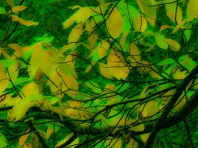 Digital Art - Vert Leaves by Kristen R Kennedy