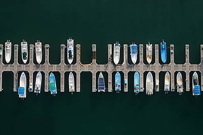 Aerial Photograph - Vertical Alignment by Shoayb Hesham Khattab