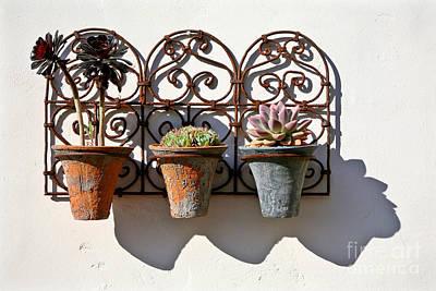 Vertical Cacti Garden Art Print