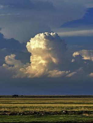Cumulus Photograph - Vertical Cumulus Clouds by Babak Tafreshi