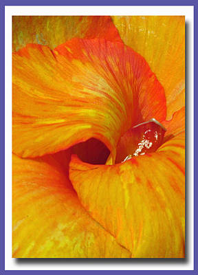 Photograph - Vertical Flair by Chris Anderson