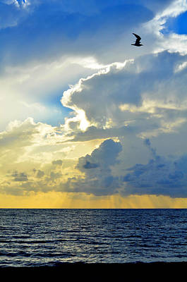 Clouds Over Sea Photograph - Vertical Horizon by Laura Fasulo