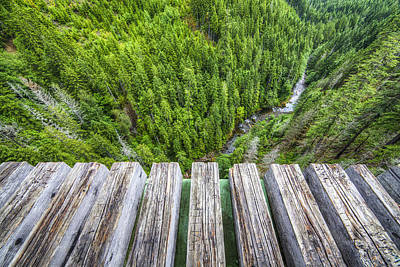 Pnw Photograph - Vertigo by Peter Irwindale