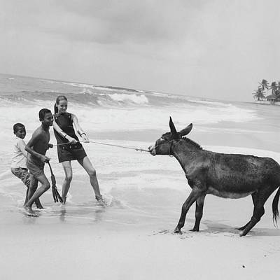 Donkey Photograph - Veruschka Von Lehndorff And Two Children Pulling by Franco Rubartelli