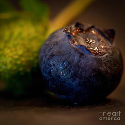Very Blueberry Square Art Print by Patricia Bainter