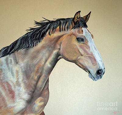 Veterinarian's Warm Blood Horse Art Print by Ann Marie Chaffin