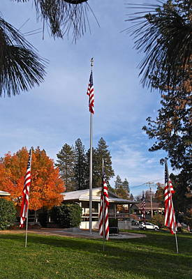Vfw Hall Veterans Day Print by Michele Myers