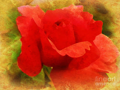 Photograph - Vibrant Rose  by Ava Larsen