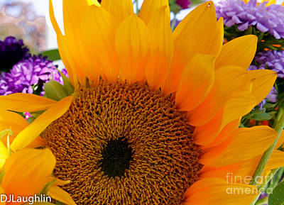 Photograph - Vibrant Sunflower by DJ Laughlin