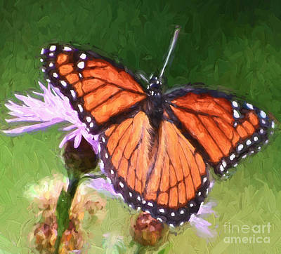 Painting - Viceroy Butterfly Wings  by Kerri Farley