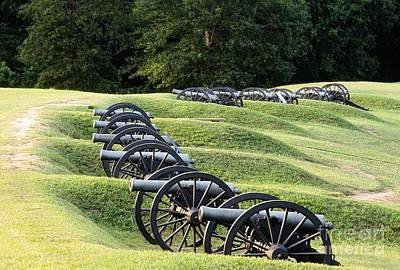Vicksburg Mississippi Usa Civil War Entrenchments Known As The Battery De Golyer Art Print by David Lyons