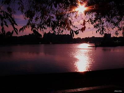 Photograph - Victoria British Columbia Sunset by Barbara St Jean