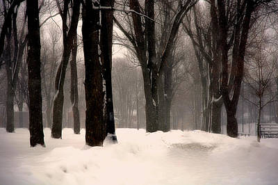 Photograph - Victoria Park In Winter by Jim Vance