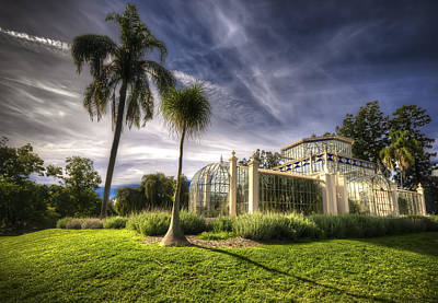 Photograph - Victorian Palm House by Wayne Sherriff