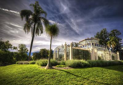 Photograph - Victorian Palm House by Wayne Sherriff