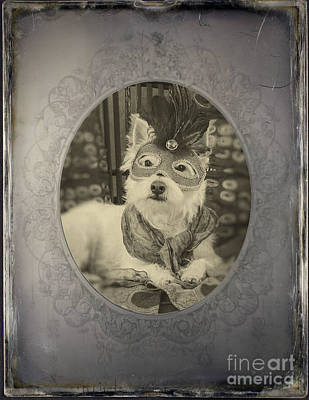 Westie Dog Photograph - Victorian Westie by Edward Fielding