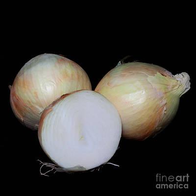 Vidalia Onions Art Print by Diane Macdonald