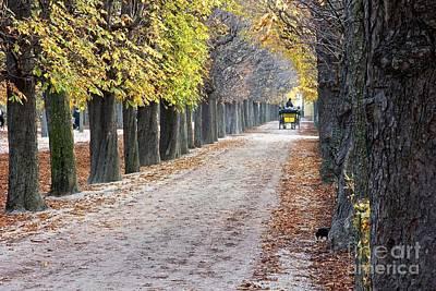 Photograph - Vienna Cart Path by Jim Gillen