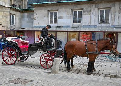 City Photograph - Vienna The Literary Coachman by Steven Richman