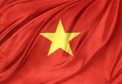 Vietnamese Flag Print by Les Cunliffe