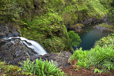 Photograph - View Above Hana Waterfall by Jenna Szerlag