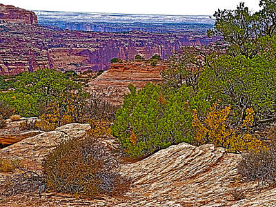 View Across From Visitor's Center In Island In The Sky District Of Canyonlands National Park-utah Art Print by Ruth Hager