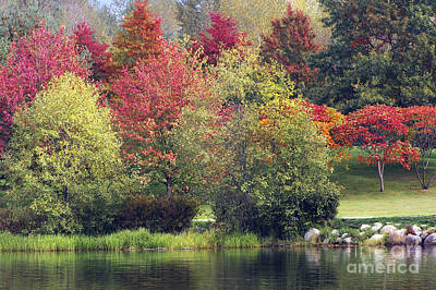 Photograph - View Across Lafarge Lake by Sharon Talson