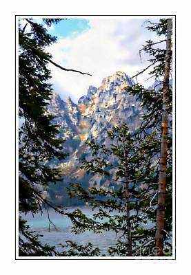 View Between The Trees Art Print