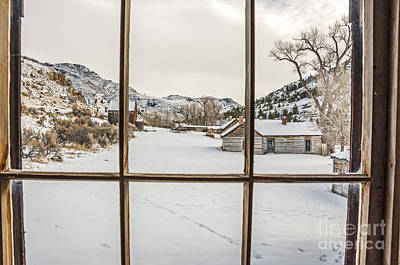 View From A Window Art Print by Sue Smith