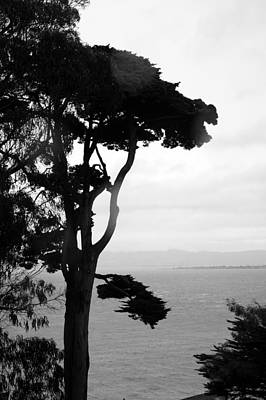 Photograph - View From Alcatraz by Bj Hodges