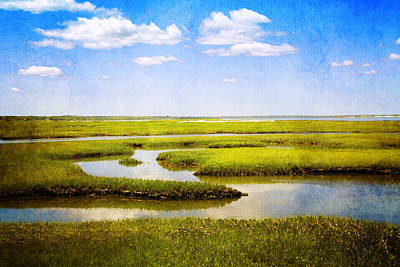 Cape Cod Photograph - View From Bass Hole Boardwalk At Grays Beach Yarmouth Port Ma Cape Cod by Brooke T Ryan