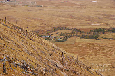Photograph - View From Bear Butte by Mary Carol Story