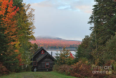 Cabin Photograph - View From Cottage Road by Charles Kozierok