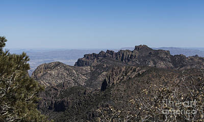 Photograph - View From Emory Peak by Amber Kresge
