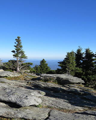 Photograph - View From Grandfather Mountain by Kathy Long