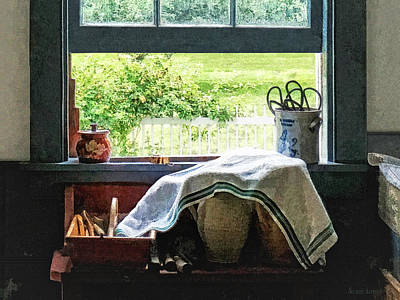 View From Kitchen Window Art Print by Susan Savad